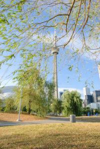 Торонто. Под ивами в HTO парке.