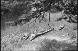 Река Молога, байдарки у стоянки