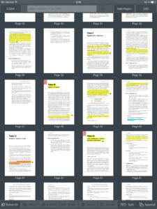 Пометки и комментарии по ходу чтения в GoodReader на iPad.
